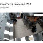В Красноярске заработала доставка известной сети пиццерий
