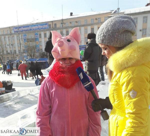 Интервью у свинки